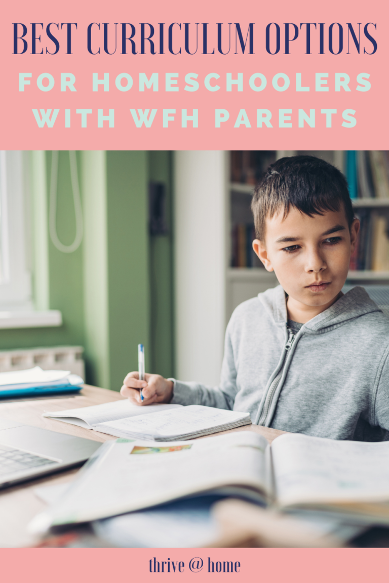 Best Homeschool Curriculum for Families With Working Parents